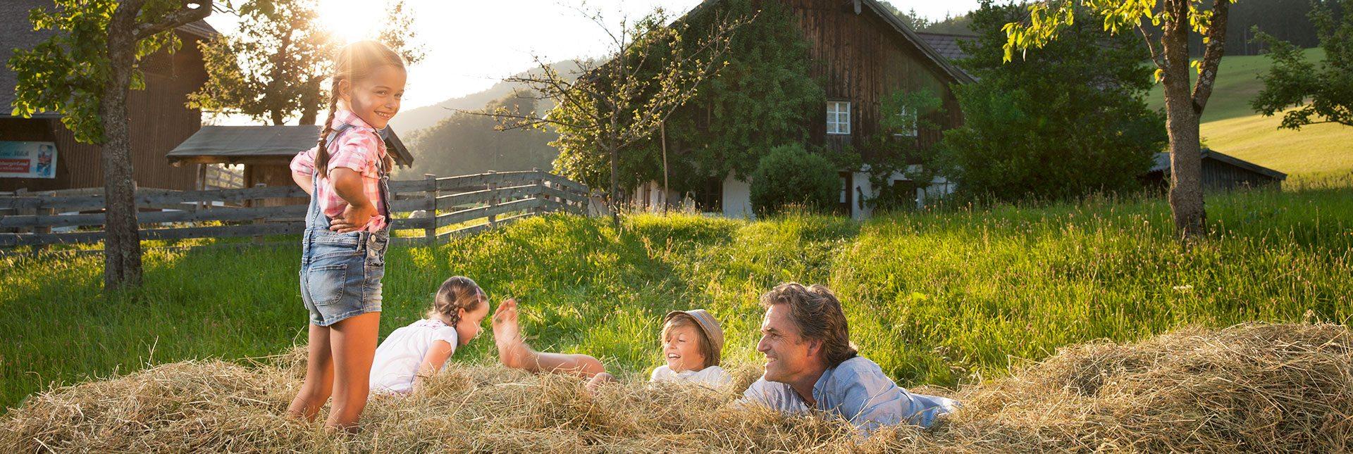 Urlaub am Bauernhof Hoisbauer –Ferienwohnungen in Gastein, Dorfgastein, Gasteinertal